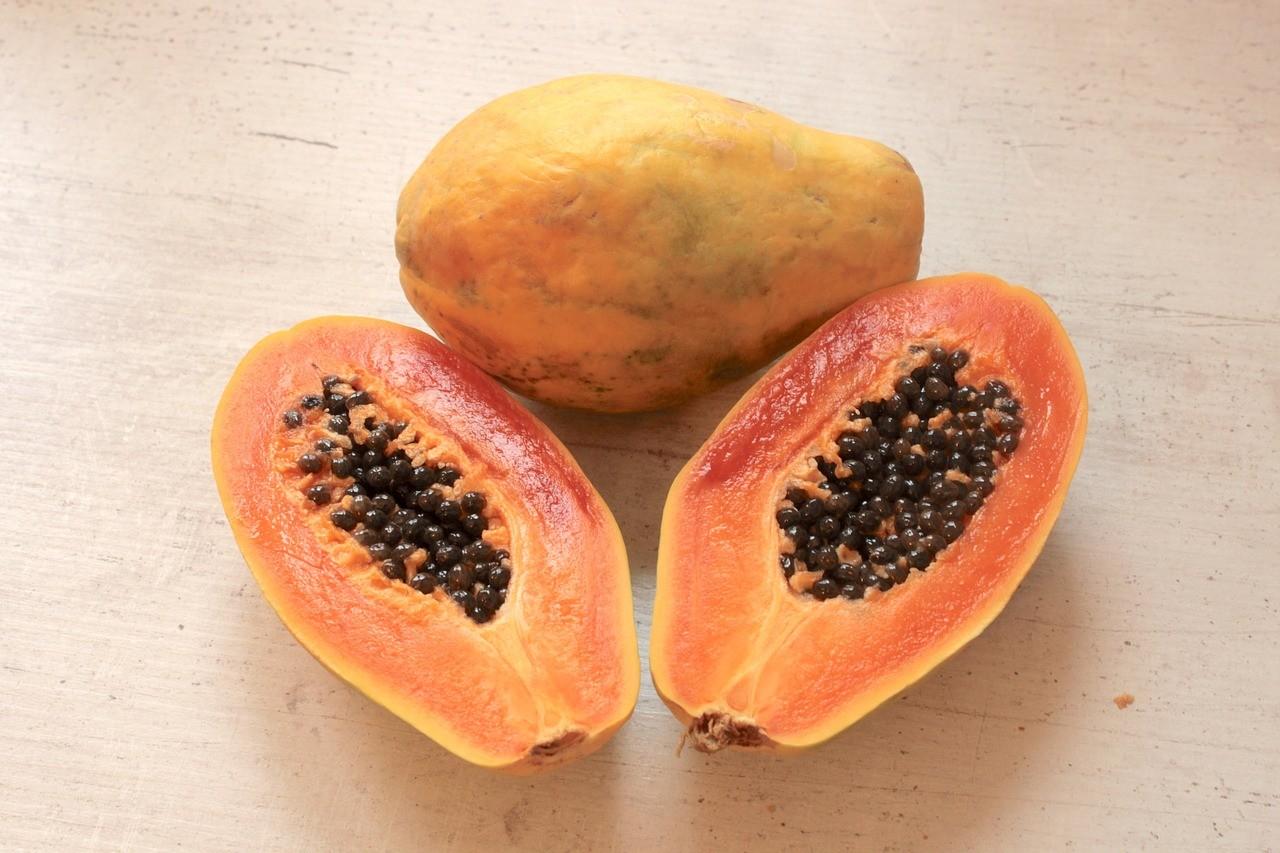 Как вырастить папайю в домашних условиях из семян и черенками? Советы на ydoo.info