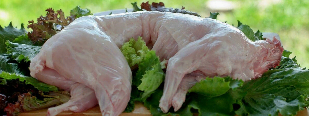 Чем полезно и как готовить мясо кролика