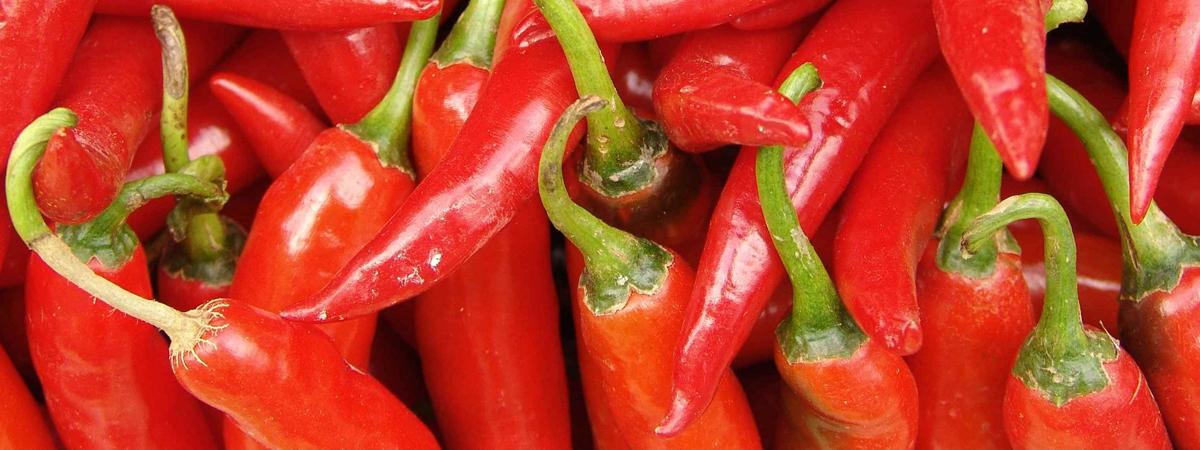 Польза и вред острого перца для здоровья мужчин и женщин, нормы и особенности употребления