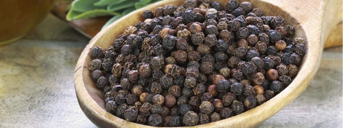Как вырастить черный перец горошком на даче