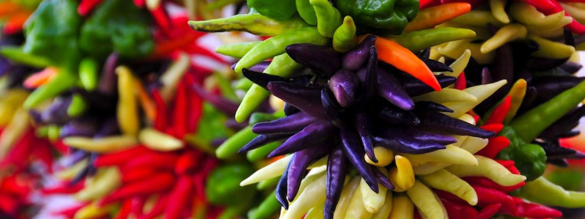 Полезные свойства кайенского перца