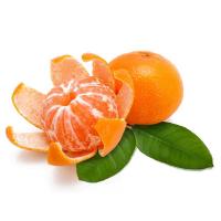 мандарины на белом фоне
