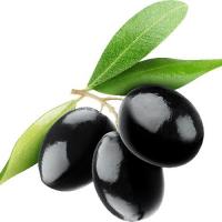 маслины на белом фоне