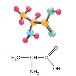 структурная и химическая формула аланина