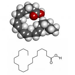 структурная и химическая формула арахиновой кислоты