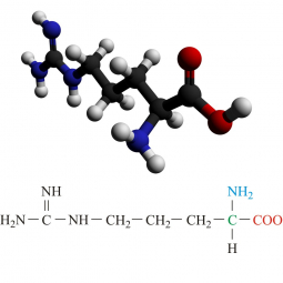 структурная и химическая формула аргинина