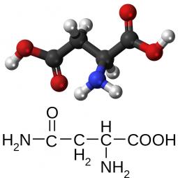структурная и химическая формула аспарагиновой кислоты