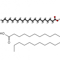 структурная и химическая формула бегеновой кислоты