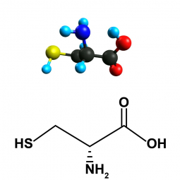 структурная и химическая формула цистеина
