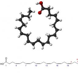 структурная и химическая формула докозагексаеновой кислоты