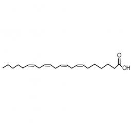 химическая формула докозатетраеновой кислоты