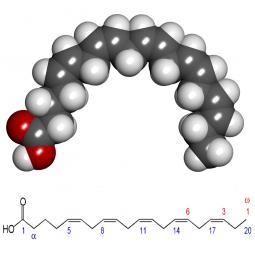 структурная и химическая формула эйкозапантаеновой кислоты