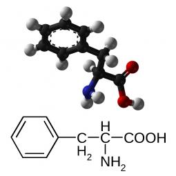 структурная и химическая формула фенилаланина