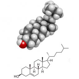структурная и химическая формула фитостерола