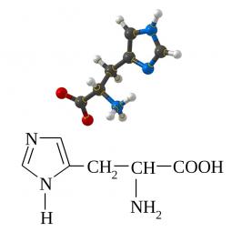 структурная и химическая формула гистидина