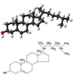 структурная и химическая формула холестерина