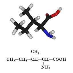 структурная и химическая формула изолейцина