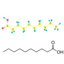 структурная и химическая формула каприновой кислоты