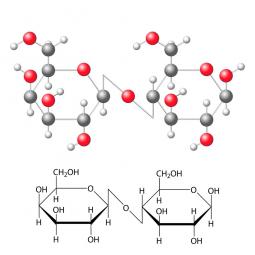 молекула и структурная формула лактозы на белом фоне