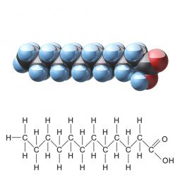 структурная и химическая формула лауриновой кислоты