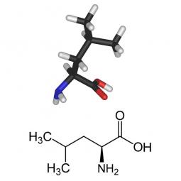 структурная и химическая формула лейцина