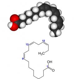 структурная и химическая формула линоленовой кислоты