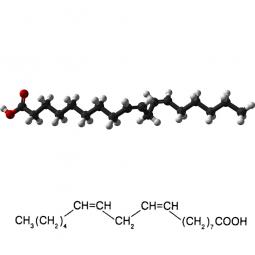 структурная и химическая формула линолевой кислоты