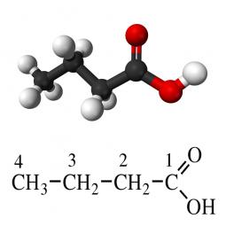 структурная и химическая формула масляной кислоты