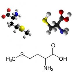 молекула и структурная формула метионина и цистеина на белом фоне