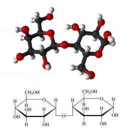 структурная и химическая формула моно- и дисахаридов (сахаров)
