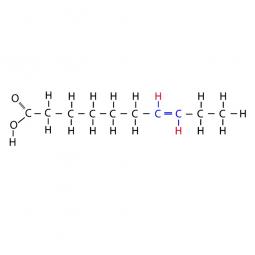 структурная и химическая формула мононенасыщенных трансжиров