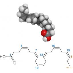структурная и химическая формула жирной кислоты омега-3
