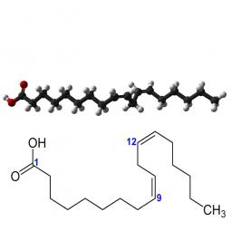 структурная и химическая формула омега-6