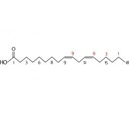 химическая формула гамма-линоленовой кислоты омега-6