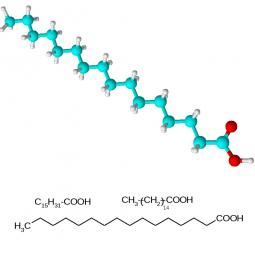 структурная и химическая формула пальмитиновой кислоты