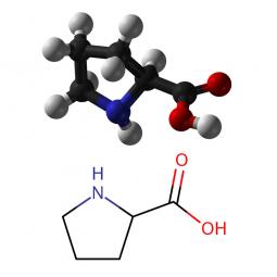 структурная и химическая формула пролина