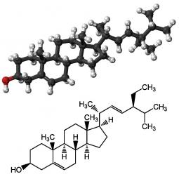 структурная и химическая формула стигмастерола
