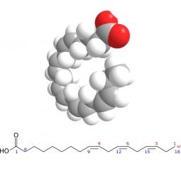 структурная и химическая формула стиоридовой кислоты