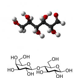 структурная и химическая формула углеводов