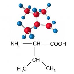 структурная и химическая формула валина