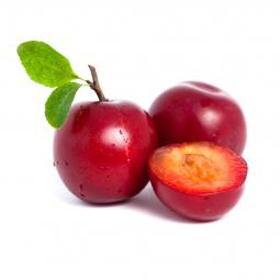 плоды красной алычи