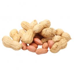 арахис на белом фоне