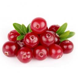 ягоды брусники на белом фоне