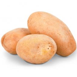 три картошины на белом фоне