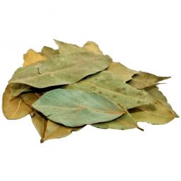 сушеные лавровые листья на белом фоне