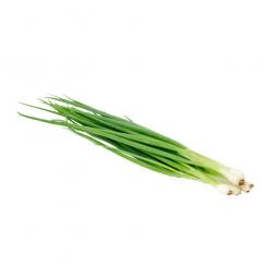 фото зеленого лука на белом фоне