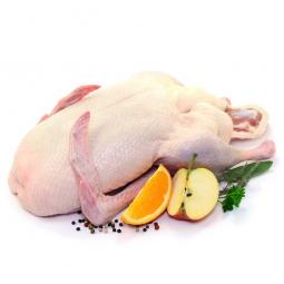 сырое мясо гуся на белом фоне