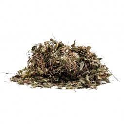 сушеные травы на белом фоне
