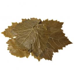 фото консервированных виноградных листьев на белом фоне