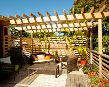 деревянная пергола, вьющиеся растения, кресла и диванчик